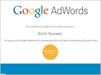 Google Advertising Professional